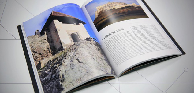 Castle tours book